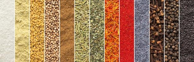 Collage panoramico di spezie ed erbe aromatiche sfondo isolato. trama di condimento per il design di imballaggi alimentari. raccolta di aromi colorati, vista dall'alto.