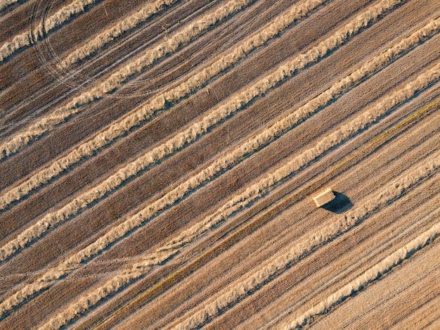 Panoramica da droni volanti a un campo agricolo dopo la raccolta del grano. strisce diagonali di terreno dopo il raccolto, sfondo naturale. vista dall'alto