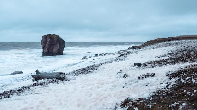 Paesaggio tempestoso panoramico con schiuma bianca del mare sulla riva