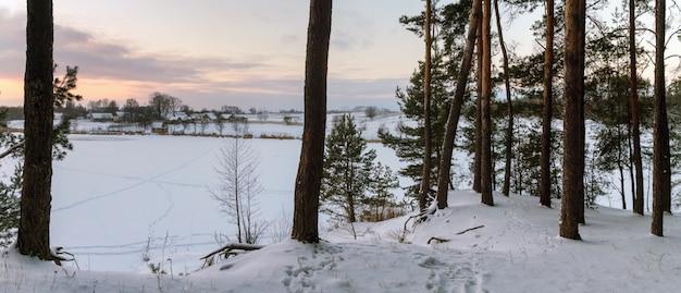 Vista panoramica del lago ghiacciato dalla foresta