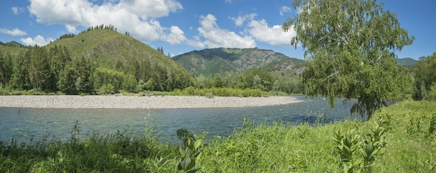 Vista panoramica di un fiume di montagna in una giornata estiva