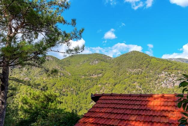 Vista panoramica sulle montagne, il tetto della casa e l'albero contro il cielo.