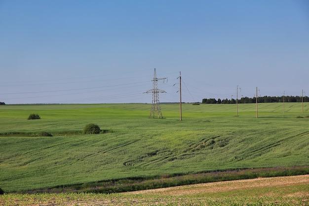 La vista panoramica della natura nel paese della bielorussia