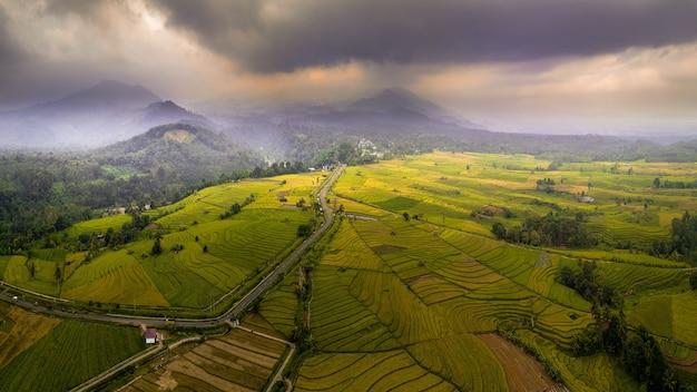 Panoramica delle risaie di vista con la catena montuosa indonesia