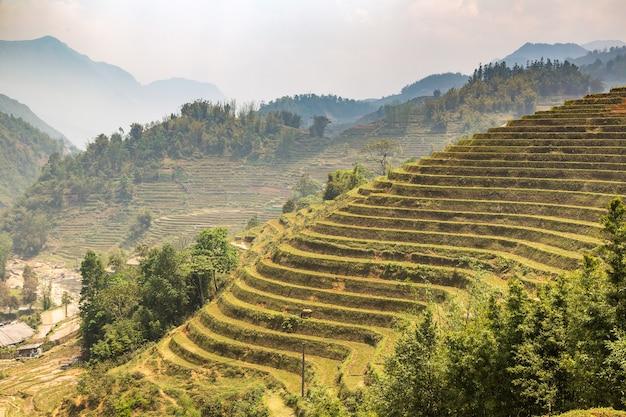 Vista panoramica del campo di riso terrazzato a sapa