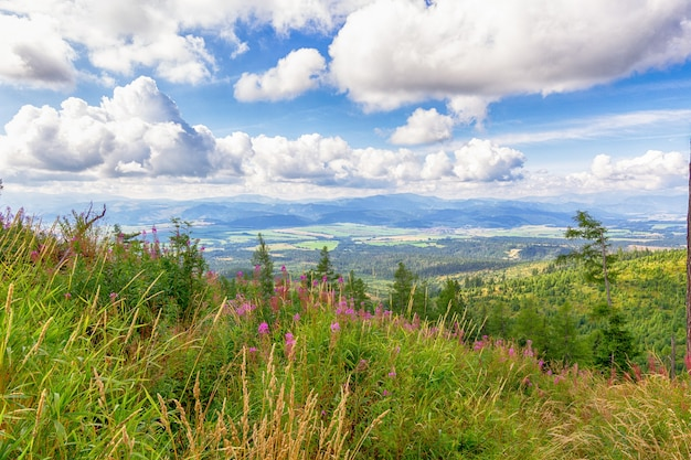 Vista panoramica sulla valle e sui monti. strbske pleso alti tatra. slovacchia europa.