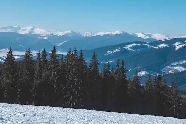 Vista panoramica della bellezza delle montagne innevate d'inverno nella natura. copia spazio Foto Premium