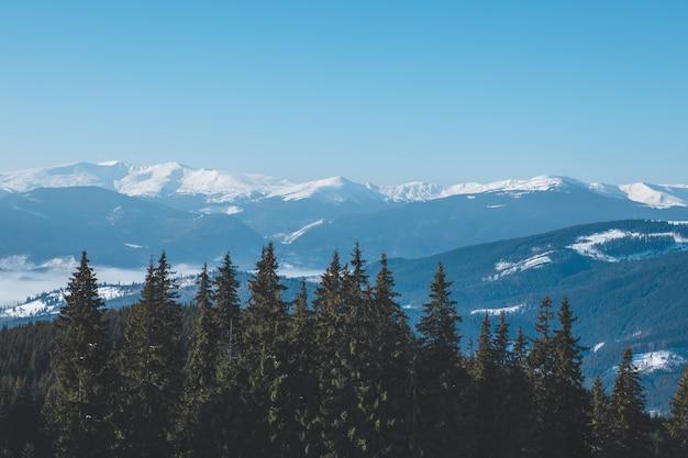 Vista panoramica della bellezza delle montagne innevate d'inverno nella natura. copia spazio