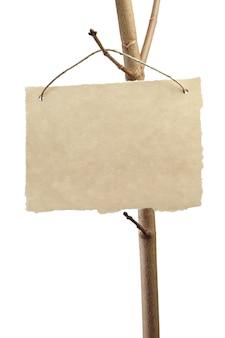 Carta per annuncio su un ramo di albero isolato su bianco