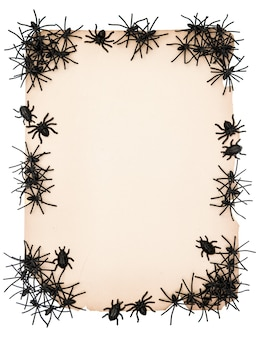 Sfondo di carta con ragno nero. decorazione di halloween