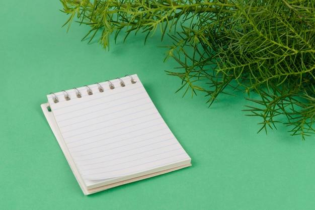 Blocco note di carta accanto a rami di cipresso sul verde.