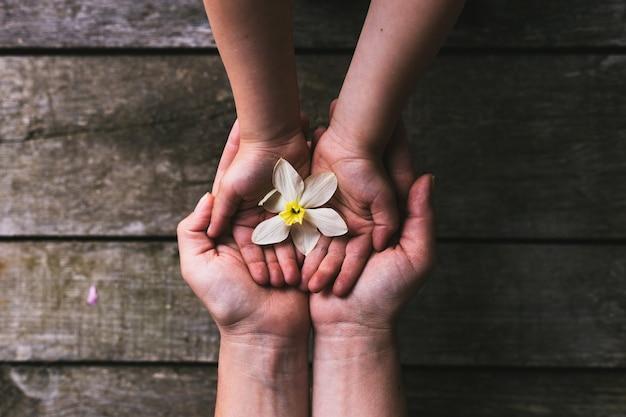Mani del bambino e del genitore che passano i fiori