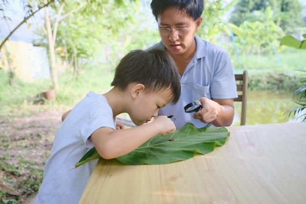 Genitore seduto homeschooling, padre e figlio asiatici che si divertono guardando attraverso la lente d'ingrandimento