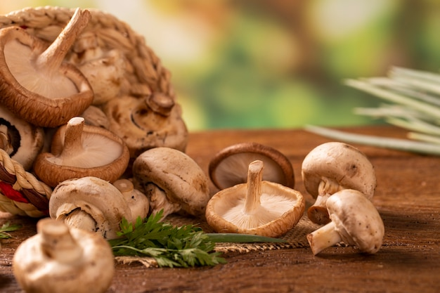 Parigi o champignon e funghi shitake