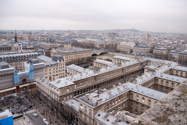 Vista di parigi dalla cattedrale di notre dame. sacre-coeur in superficie