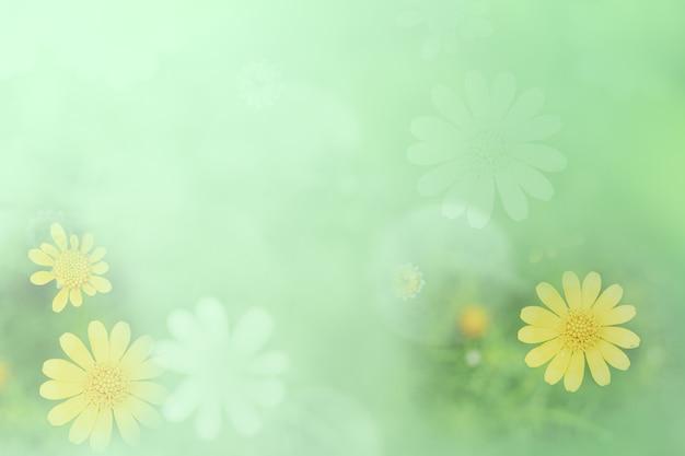 Fondo d'annata del ramo della fioritura del fiore della molla bella verde giallo pastello con lo spazio libero della copia