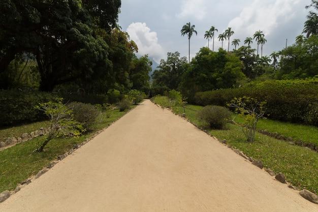 Percorso nel giardino botanico di rio de janeiro in brasile.