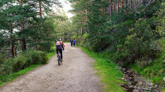 Sentiero nel bosco per sportivi, persone in bicicletta e trekking