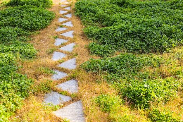 Percorso in giardino, prati verdi con percorsi in mattoni, progettazione del paesaggio del giardino.