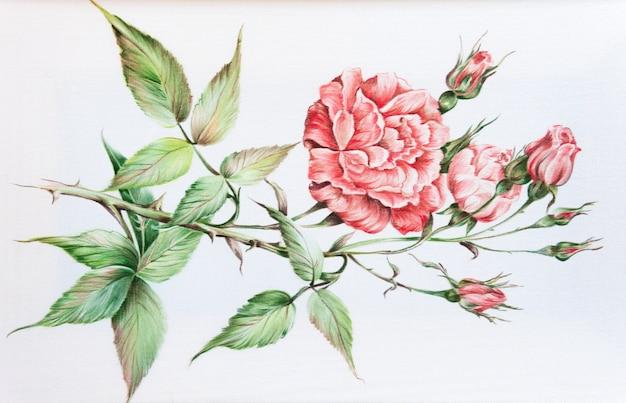 Modello. fiori e foglie di seta batik disegnati a mano su uno sfondo bianco.