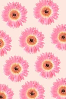 Motivo realizzato con fiori di gerbera rosa su sfondo rosa pastello.