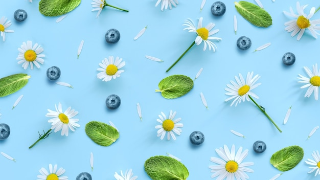 Modello di margherite primaverili con mirtilli e foglie di menta su uno sfondo blu pastello