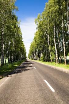 Strada asfaltata nel periodo estivo