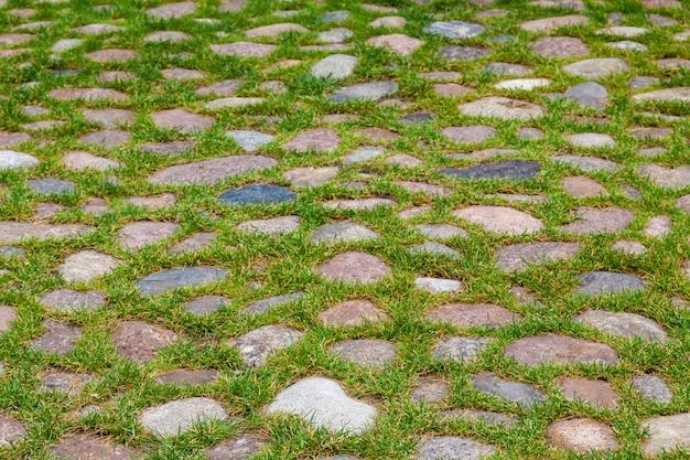 Pavimentazione di ciottoli di granito ricoperta di erba verde