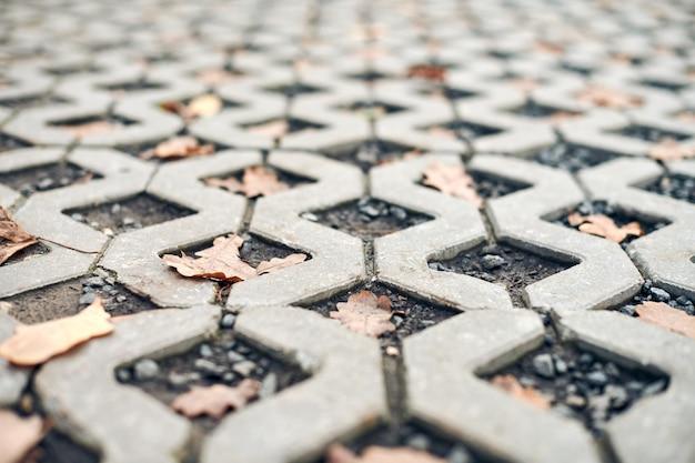 Pavimentazione in pietra con foglie di autunno