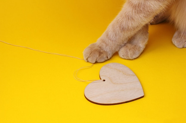 Zampe di un gatto rosso che gioca con un cuore di legno su una corda su uno sfondo giallo. amore per il concetto di animali domestici.