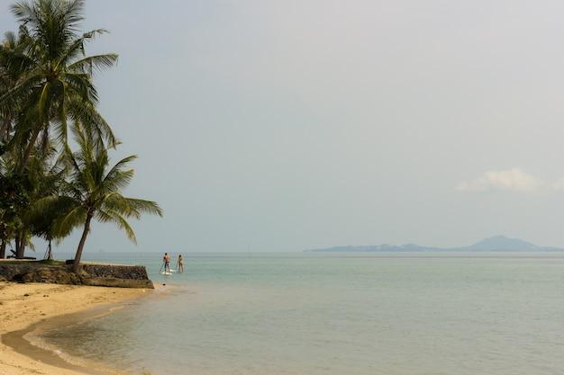 Spiaggia tranquilla a koh phangan con palme e giovane coppia sul paddle board in background e l'isola di koh samui, in thailandia