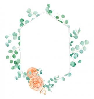Acquerello rosa e arancio acquerello rose flower frame background con l'inglese rose austin e l'eucalyptus