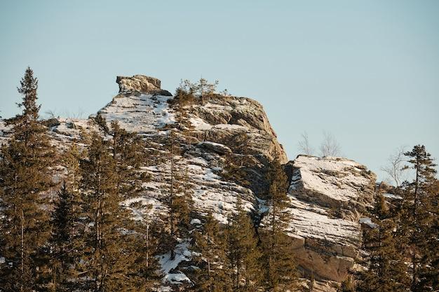 Picco di montagna rocciosa circondato da conifere