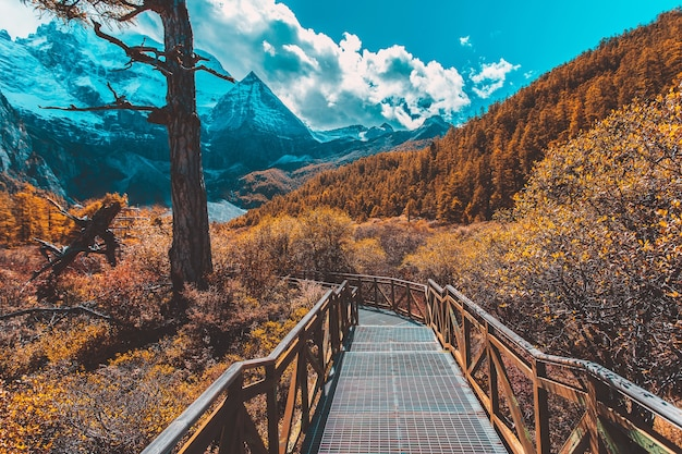 Pearl lake o zhuoma la lake e la montagna di neve in autunno nella riserva naturale di yading, sichuan, in cina