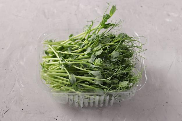 Peas microgreen si trova in un contenitore di plastica su una superficie grigia, primo piano, formato orizzontale