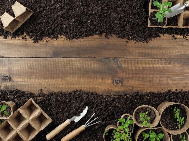 Torba le piantine di torba e gli attrezzi da giardino sono a terra. tavole di legno al centro. copia spazio. vista dall'alto.