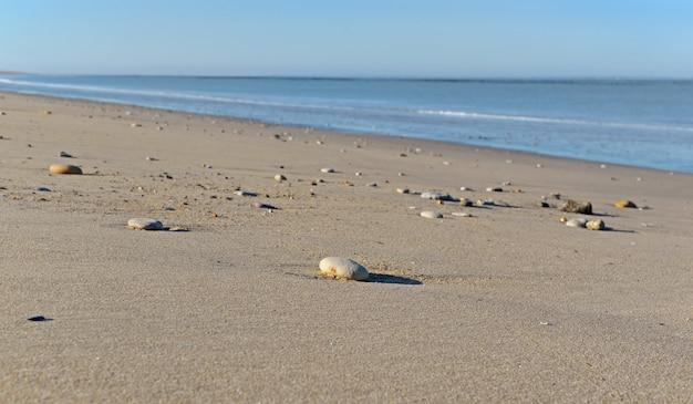 Ciottoli nella sabbia della spiaggia con lo sfondo del mare nell'oceano atlantico in francia