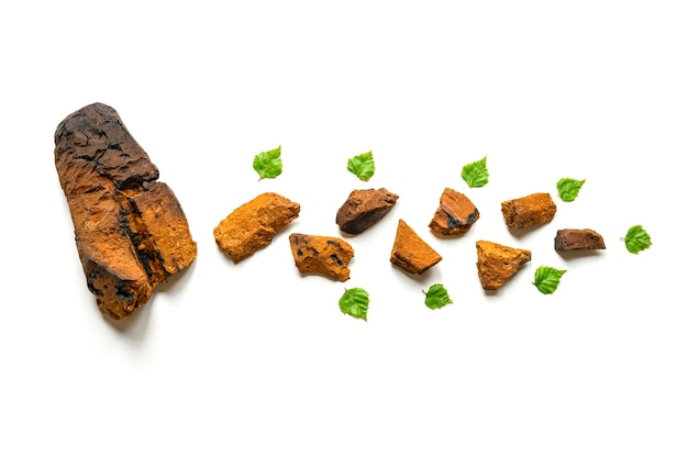 Pezzo sbucciato di fungo chaga di betulla e pezzi di funghi chaga schiacciati per la preparazione del tè isolato su una superficie bianca