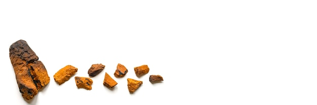 Pezzo sbucciato di fungo chaga di betulla e pezzi di fungo chaga schiacciati per la preparazione del tè