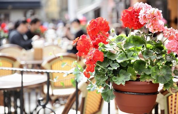 La gente in caffè sulla piazza stortorget a stoccolma, svezia. focus sui fiori di geranio