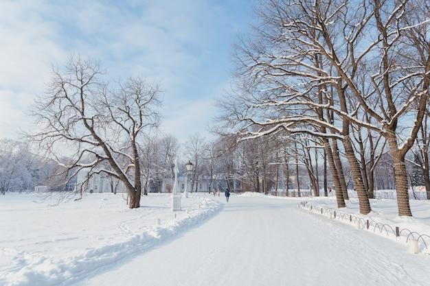 La gente che camminava sull'isola di yelagin in inverno san pietroburgo, russia.