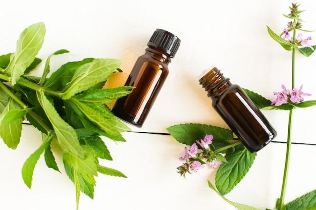 Olio essenziale di menta piperita in bottiglie di vetro di dispenser con foglie di menta fresca su sfondo bianco. vista dall'alto.