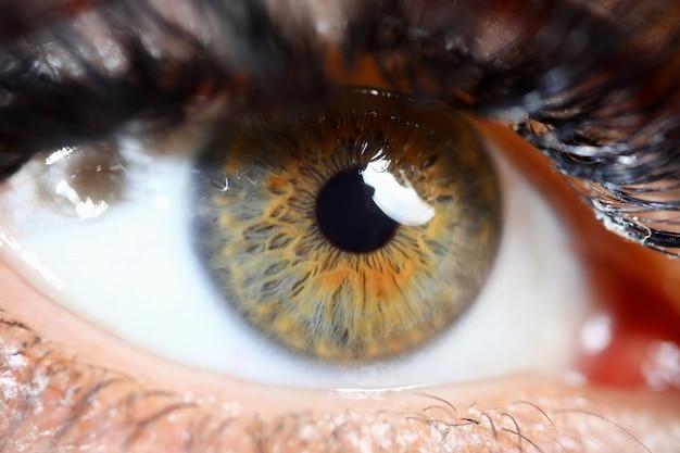 Persona con uno sguardo chiaro