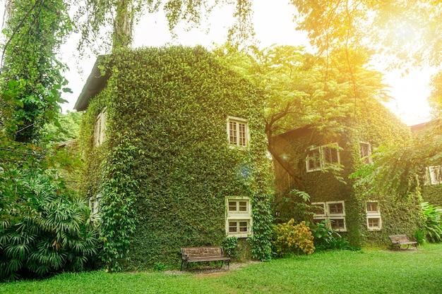 Prospettiva e vista esterna della casa coperta da viti e piante verdi su un cielo azzurro brillante con sole e sfondo riflesso lente.