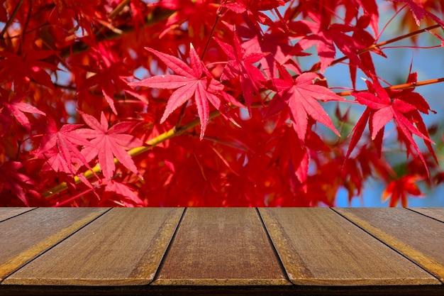 Contatore di legno di prospettiva con foglie di acero giapponesi completamente rosse.