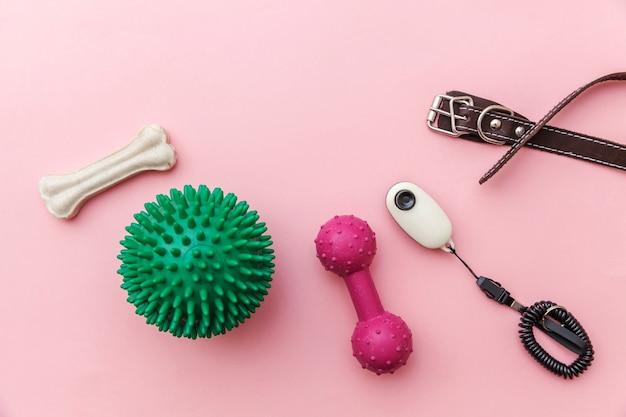 La cura degli animali e il concetto di animali. giocattoli e accessori per il gioco del cane e l'addestramento isolato su sfondo rosa pastello alla moda