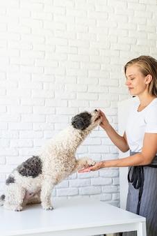 Cura degli animali. giovane donna sorridente che dà al suo cane uno spuntino