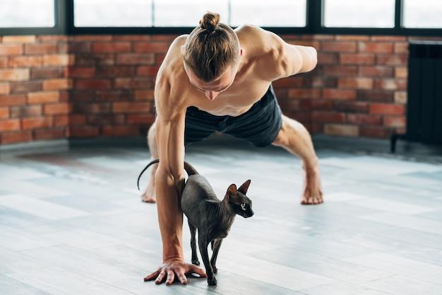 Yoga per animali domestici. allenarsi con i tuoi animali può essere divertente. in forma yogi sano e forte che prova esercizio con il suo gatto sphynx.