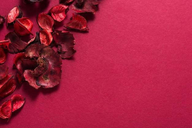 Petali di rose rosse