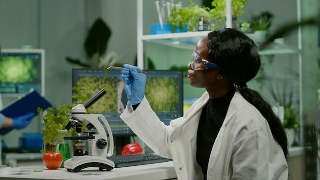 Donna farmaceutica che guarda un campione di foglie organiche